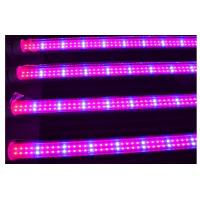 Best Full spectrum 18w T8 led grow light for plant growth , flower and vegetable wholesale