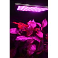 Best Energy Efficiency Hydroponic Led Grow Lights For Indoor Gardening Alluminum Material wholesale