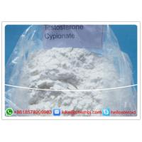 Steroids Raw Powder , Bodybuilding Testosterone Cypionate CAS 58-20-8