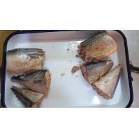 Best Wild Caught Canned Mackerel Healthy In Brine , Mackerel Fillets Canned For Salad wholesale