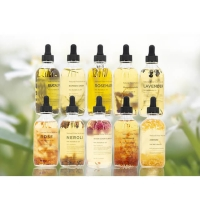 Best Gift Bottle Aromatherapy Essential Oils Set , Pure Body Naturals Essential Oils wholesale
