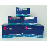 Best Whole Blood DNA Extraction Kit Midi Kit For Isolation Genomic DNA From Various Species wholesale