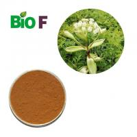 Best Health Care Powdered Herbal Extracts Angelica Dahurica Extract Powder wholesale