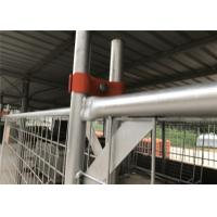 China Temporary fencing panels 2100mm x 2400mm 14 microns zinc layer hot dipped galvanized on sale