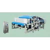 China Auto Belt Press Machine Fruit Processing Equipment Juice Beverage Process Machinery on sale
