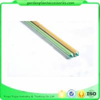 Best 8mm Green Plastic Coated Bamboo Garden Stakes / 8 Foot Bamboo Pole wholesale