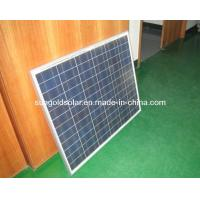 Best Poly Solar Panel (100W) wholesale