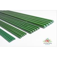 Cheap Green Steel Garden Stakes PE Plastic Coated 8mm Diameter , 60cm Length  Plant support Steel with plastic coated for sale