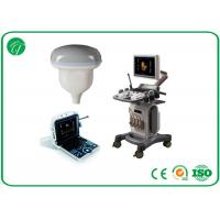 China Portable B Mode Ultrasound Scanner With Windows System Ultrasound Imaging Equipment on sale