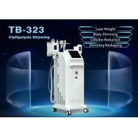 Buy cheap 1800W Cryolipolysis Weight Loss Freezing Fat RF Slimming Machine Beauty Equipment from wholesalers
