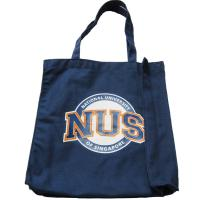 Best Canvas Tote Shopper Bags 10Oz , Large Travel Tote Bags With Pockets wholesale