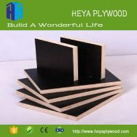 Best Cheap 8 - 18mm black laminated formica plywood sheet suppliers wholesale