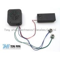 Best Square Recording Sound Module With An Speaker Cell Box And Two Push Buttons wholesale