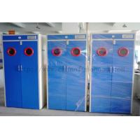 Best Full Steel Laboratory Storage Cabinets , Blue Gas Cylinder Safety Cabinets wholesale