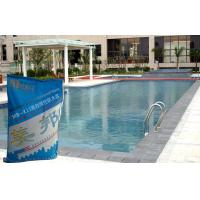 China Swimming Pool Waterproofing Slurry With Concrete Polymer Safety on sale