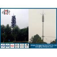 Cheap Disguised Pine Tree Telecommunication Towers Inner Climbing Ladder for sale