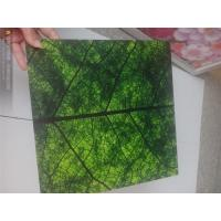 Best Wide Format UV Flatbed Printing For Glass / Displays Full Color wholesale