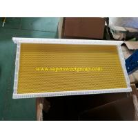 China Beekeeping langstroth plastic beehive bee frame with plastic sheet supplier on sale