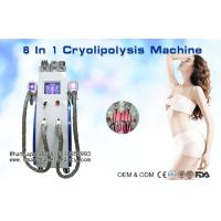 Best Multifunction Cryolipolysis Slimming Machine With Cavitation / Radio Frequency / Lipo Laser wholesale
