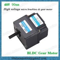 Best 40W 90mm power brushless dc motor with motor controller 220V, 230V wholesale
