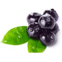 Best Anti Diseases Vaccinium Bilberry Extract Powder Antioxidant Food Supplements wholesale