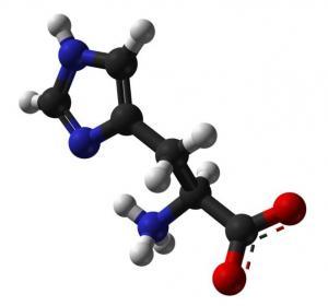 Best C6H9N3O2 slightly bitter taste White crystals Semi-Essential Amino Acids L-Histidine  wholesale