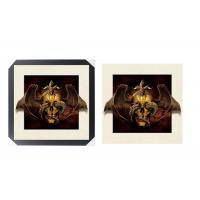 Best SGS 3d Lenticular Picture With PS Frame 0.6mm Pet Thickness 5d Photos wholesale