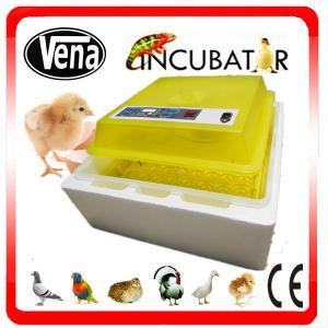 Best Professional Electronic Thermostat control mini eggs incubator machine mini duck incubators VA-48 for sale wholesale
