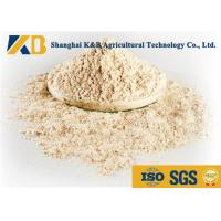 Best No Agglomeration Or Mildew Brown Rice Powder For Pet Feeding Addictive wholesale