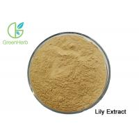 Best Pharmaceutical Health Care Products Natural White Lily Extract Brown Yellow Fine Powder wholesale