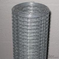 Buy cheap Electro Galvanized Welded Wire Mesh|By Low Carbon Steel Wire 1/4~12inch from wholesalers