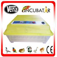 Best Best price energy-saving automatic small incubator for parrot egg hatching VA-48 wholesale