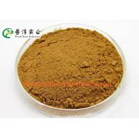 Best Anti Histamine Apple Natural Plant Extracts 25% Quercetin For Preventing Cancer wholesale