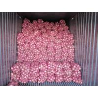 Buy cheap Fresh dark red onion, organic Chinese rose peeled onion, frozen vegetable, medium size from wholesalers