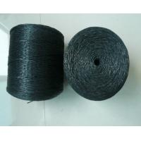 Cheap Breaking Strength Braided Twisted 100% Polypropylene Twine / Pp Rope For Packing for sale