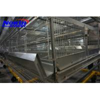 Best automatic chicken layer cage/chicken egg poultry farm equipment/small chicken wholesale