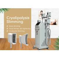 Best Vertical Cryolipolysys Fat Freeze Slimming Machine With 3.5 Inch Touch Screen wholesale