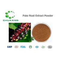 Best ISO Standard Natural Poke Root Extract / Phytolacca Americana Extract Powder wholesale