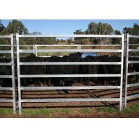 Best Hot Dipped Galvanized Oval Tube Cow Fence Panel 40X80MM Pipe With 6 Rail In the Middle wholesale