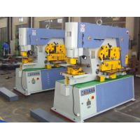 Best Multi Function Hydraulic Ironworker 900KN Cuttign Angle Steel wholesale