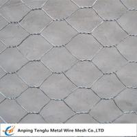 Best Hexagonal Wire Netting/Hex Decorative Wire Mesh|Used for  Fencing Gabion wholesale