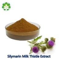 China best milk thistle extract powder silymarin powder alibaba wholesale liver detoxification support supplement on sale