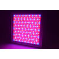 Best Full Spectrum Dimmable LED Grow Lights IP65 Waterproof With 58W Power wholesale