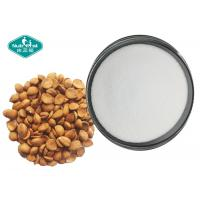 Best Bitter Apricot Seed Extract Vitamin B17 Amygdalin / Laetrile 98% for Cancer Treatment wholesale