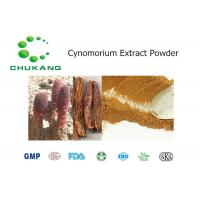 Best Red Brown Fine Herbal Extract Powder / Cynomorium Extract Enhance Immune System wholesale