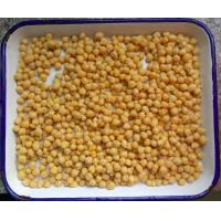 Best Net Weight 567g Cooking Canned Chickpeas In Water Easy Open Lid For Salads wholesale