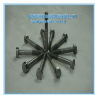 Quality very beautiful molybdenum nuts Mo bolts/nuts and screwsM2,M8,m10,m4,m5 etc good price wholesale