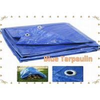 Best Blue Tarpaulin Blue PE Tarp  Blue Tarp Cover   Economy Blue Poly  Tarp wholesale