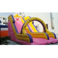 Best commercial inflatable slide for water park double water slide wholesale