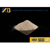 Best Animal Nutrition Supplements / White Rice Protein Powder High Biological Value wholesale